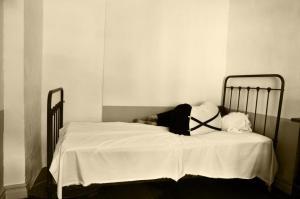no to locked ward life partners Life partners – Rosie's story iu 300x199