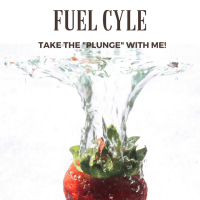 Z's One Week Fuel Cycle Challenge