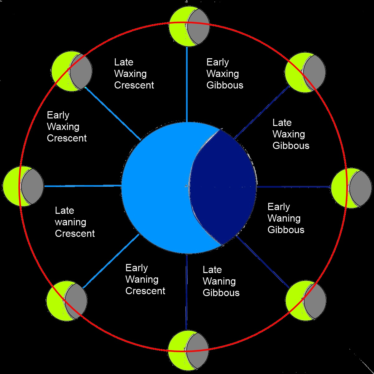 Moon Phases Cycle