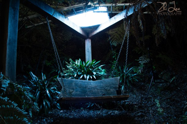 A 80cm x 120cm strobe with blue cellophane in front of the outer baffle, prepped cautiously on a ladder on top of the pergola.  This gives off a blueish light, perfect for the night lighting we wanted to create.