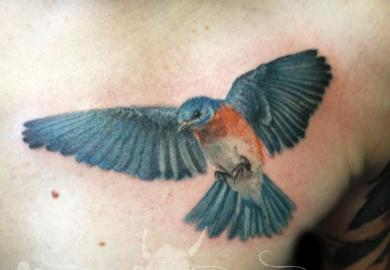 Bluebird Tattoo Designs
