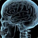 Влияние наркотиков на мозг человека.