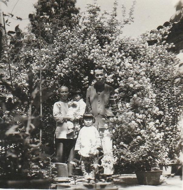 grandparents' yard