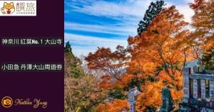 神奈川 紅葉No.1大山寺 阿夫利神社|小田急電鐵 丹澤大山周遊券 日本米其林綠色指南二星 一星