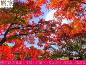 東京都高尾山|沒爬上紅葉台別說你上過高尾山看紅葉、富士山、櫻花