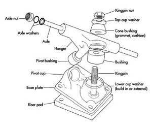 All Skateboard Parts Within Diagram Wiring And Engine