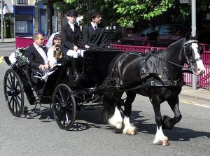 640px-Wedding.carriage.bristol.arp