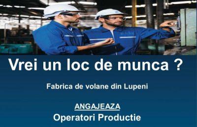 70 de locuri de muncă disponibile la Fabrica de volane din Lupeni