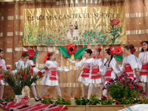 Festival Tecuci (9)