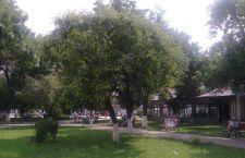 parc2