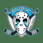 Hokejbal - Ziegelfeld Logo