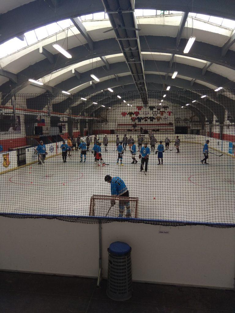 Hokejbal BHBL - Vlci Karlova Ves vs Ziegelfeld
