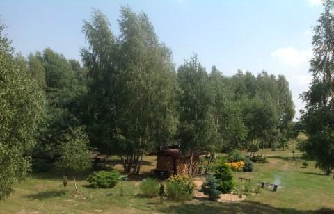 img_1062 Ogród w lesie. Sumin