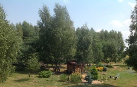 img_1066 Ogród wlesie - Sumin