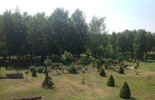 img_1071 Ogród wlesie - Sumin