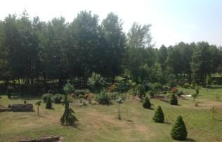 img_1071 Ogród w lesie. Sumin