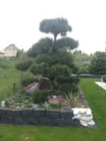 img_5250 Kaskadowy ogród w Pawłówku