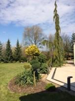 img_6274 Klasyka ogrodu. Classic garden.