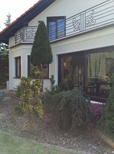 img_6287 Klasyka ogrodu. Classic garden.