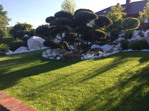 img_6465 Pawłówek - kaskadowy ogród