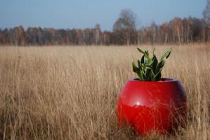 manacor-m-red-1 Donice i biokominki do domu i ogrodu