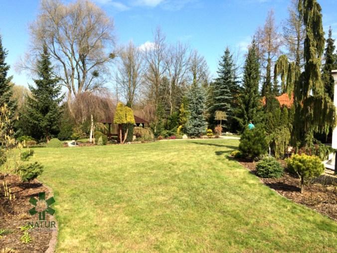 niemcz-grzenia_00000 Klasyka ogrodu. Classic garden.
