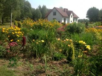ogrc3b3d-naturalny-w-sumienie_00016 Ogród w lesie. Sumin