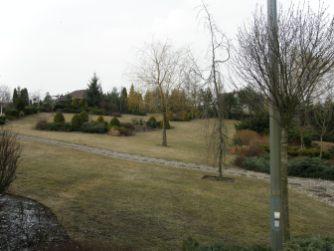 p3210068 Ogród naturalistyczny w Górznie - film w jakości 4k