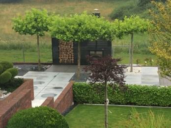 img_8574 Ogród jak z obrazka