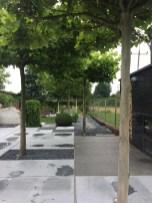 img_8597 Ogród jak z obrazka