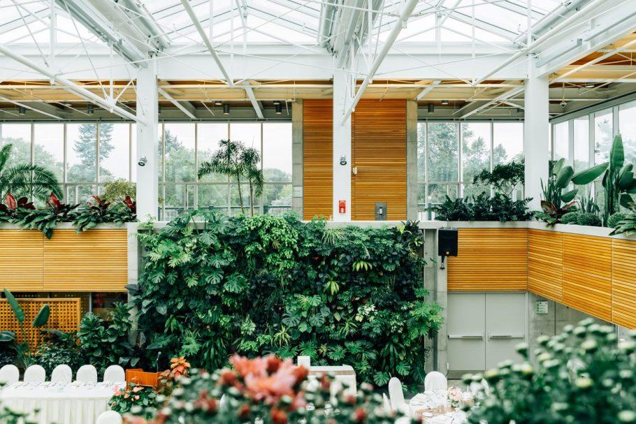 ogrod-wertykalny Miejski busz - renesans roślin we wnętrzach