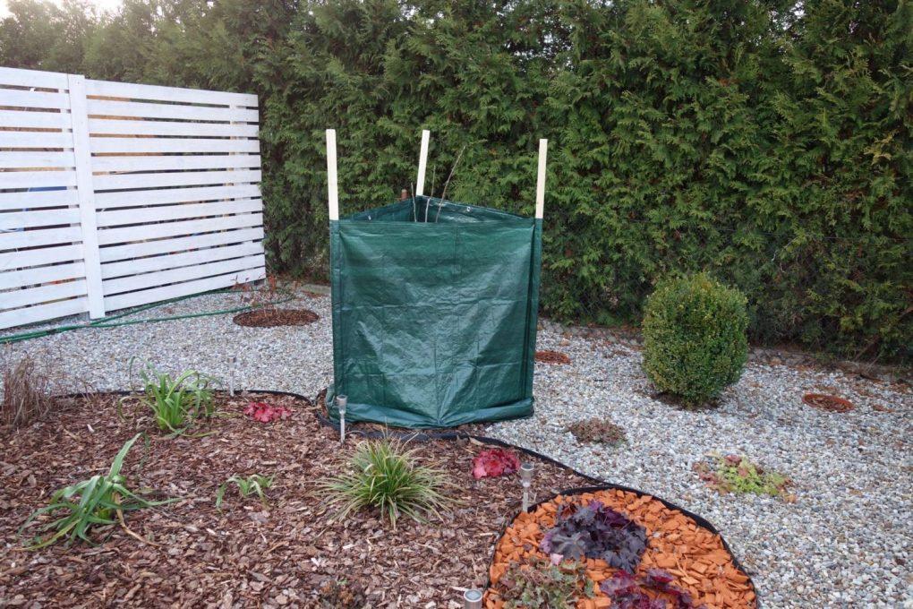 Parawan-8 Jak zabezpieczyć rośliny na zimę?
