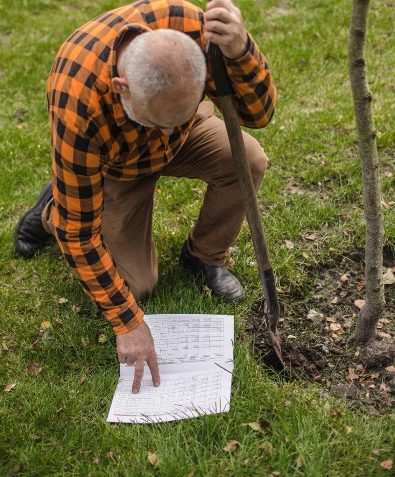 kalendarz-sadzenia-1 Prace wogrodzie naprzełomie lutego imarca – Zielone Porady 36