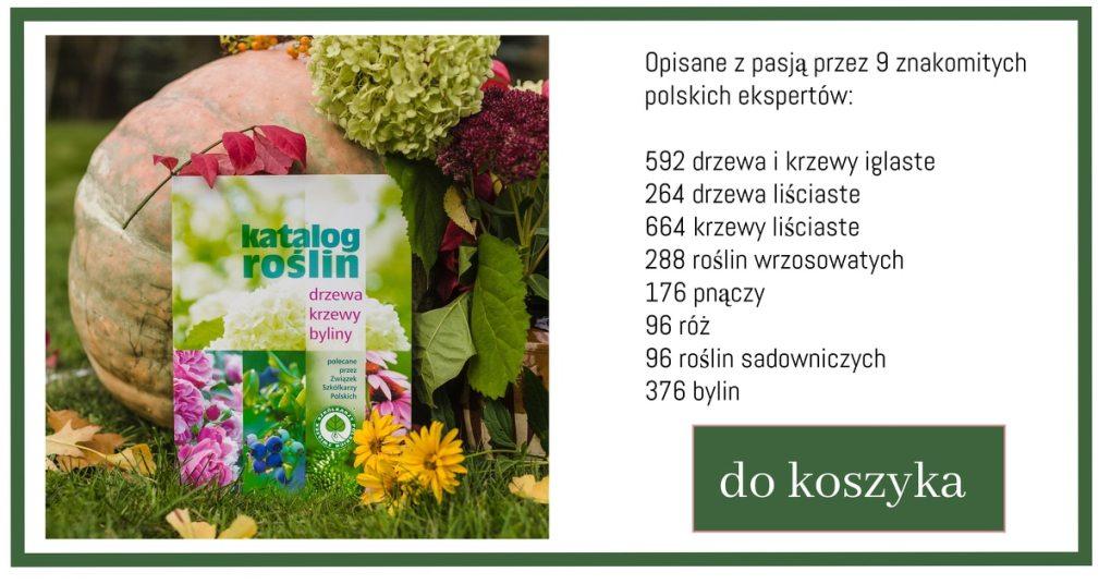 Katalog-rolin-1024x538 Piwonie wogrodzie – Zielone Porady 38