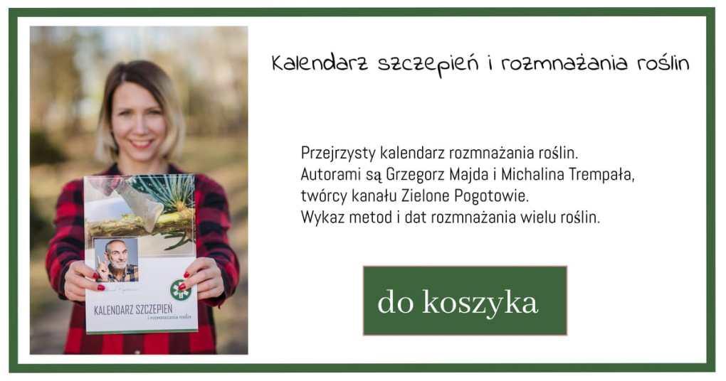 kalendarz-szczepień-i-rozmnażania-1024x538 Kalendarz księżycowy - Zielone Porady 32