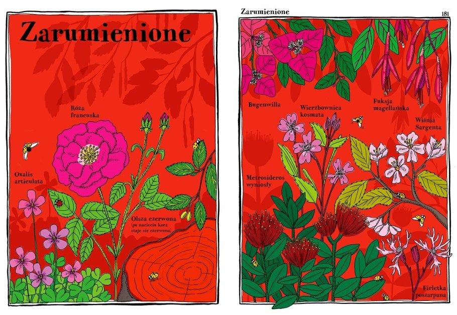 zwariowany-atlas-roślin1-1024x706 Książki o ogrodzie dla dzieci - część 5