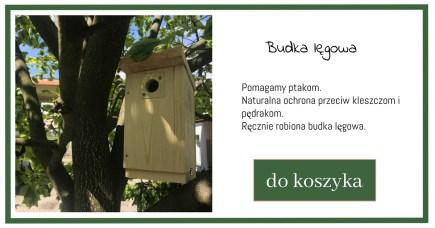budka-lgowa-1024x538 Ogród przyjazny ptakom – Zielone Porady 39