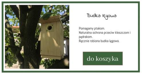 budka-lgowa-1024x538 Szpak w ogrodzie - na pTak czy na nie?