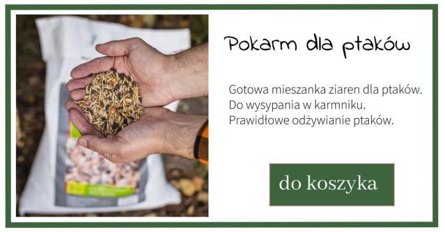 pokarm-dla-ptakow_reklama-1024x538 Jak prawidłowo dokarmiać ptaki zimą