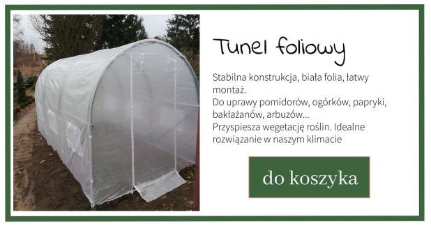 Kopia-projektu-parawan-ochronny-blog-1024x538 Jak i kiedy wysiewać warzywa – Zielone Porady 34