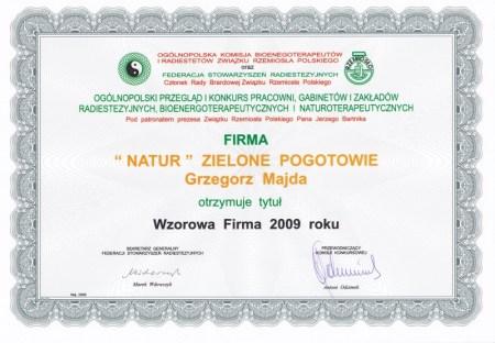 Dyplom Związku Rzemiosła Polskiego