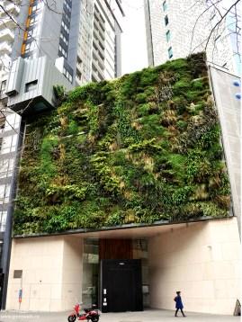 green_walls_zielone_sciany_ogrody_werykalne_architektura_krajobrazu_krakow_zielen_w_mieszkaniu23