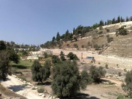 Dolina Gehenny. Za czasów Jezusa palono tu wszystkie odpady miejskie, a jeszcze wcześniej Ammonici składali tu swoje pierworodne dzieci w ofierze ich bóstwu - Molochowi. Król Jozjasz położył kres temu kultowi (2 Krl 23,10)