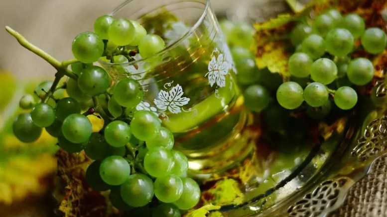 White Wine: Everything You Need To Know 1