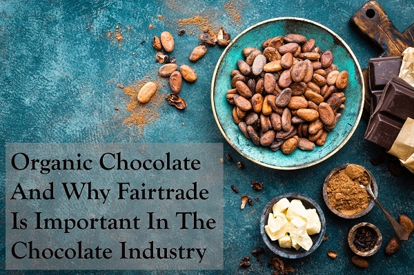 Organic Chocolate And Why Fairtrade Is Important In The Chocolate Industry
