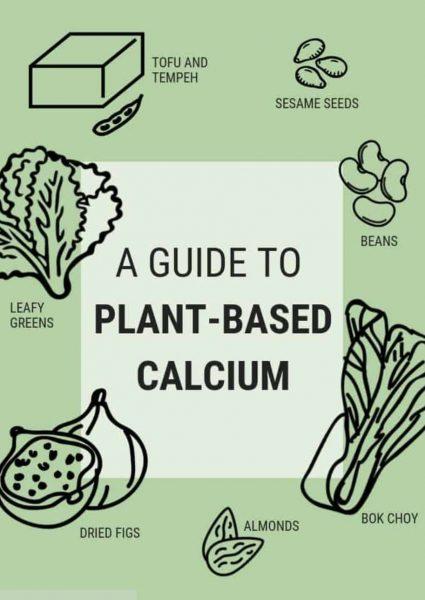 Plant Based Sources Of Calcium