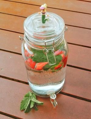 melisse_erdbeerinfusedwasser