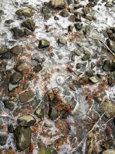 16-12-25-lake-frozen-rocks-z