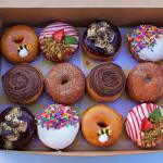 Mesin donut maker,