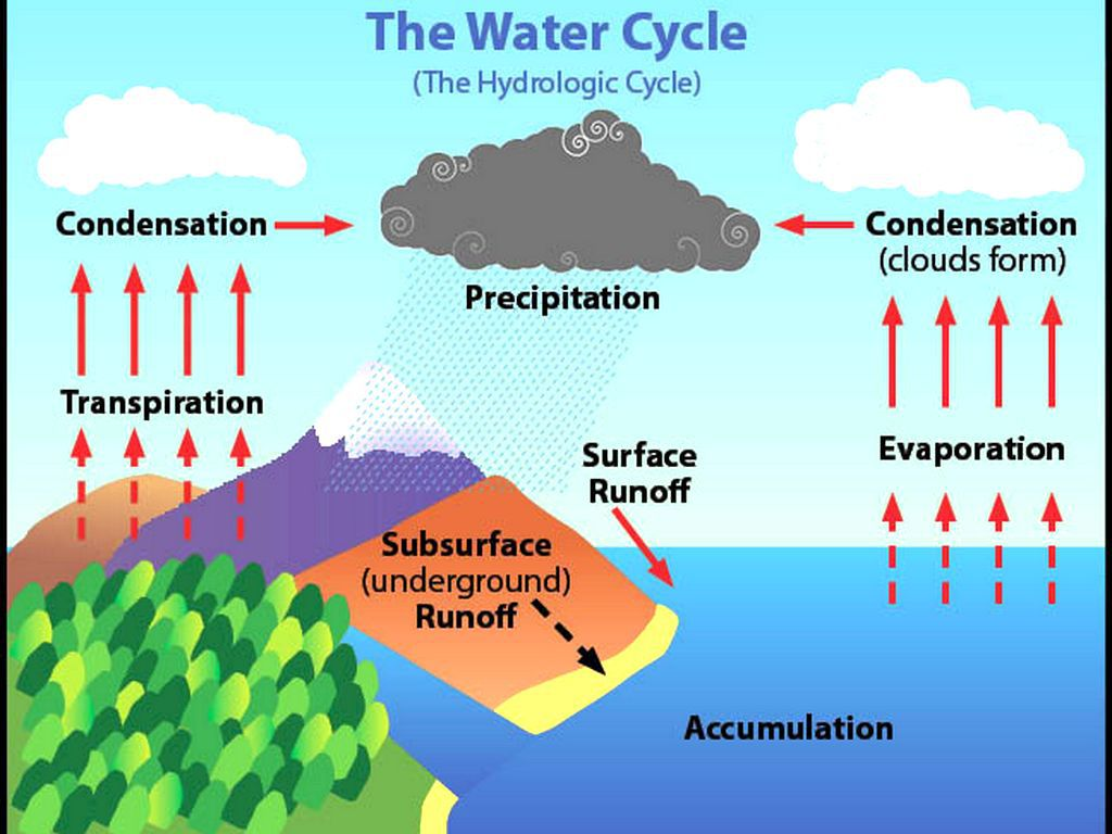 Science The Water Cycle